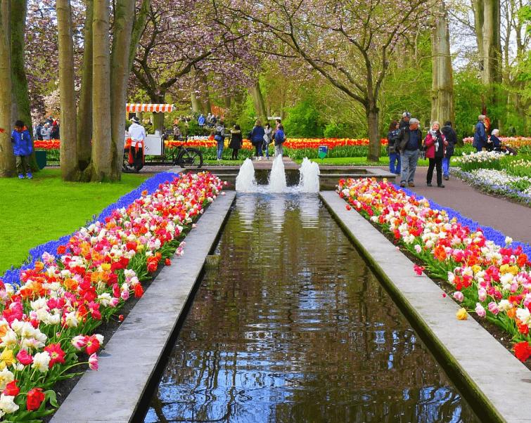 jardin_de_la_cocina_tour