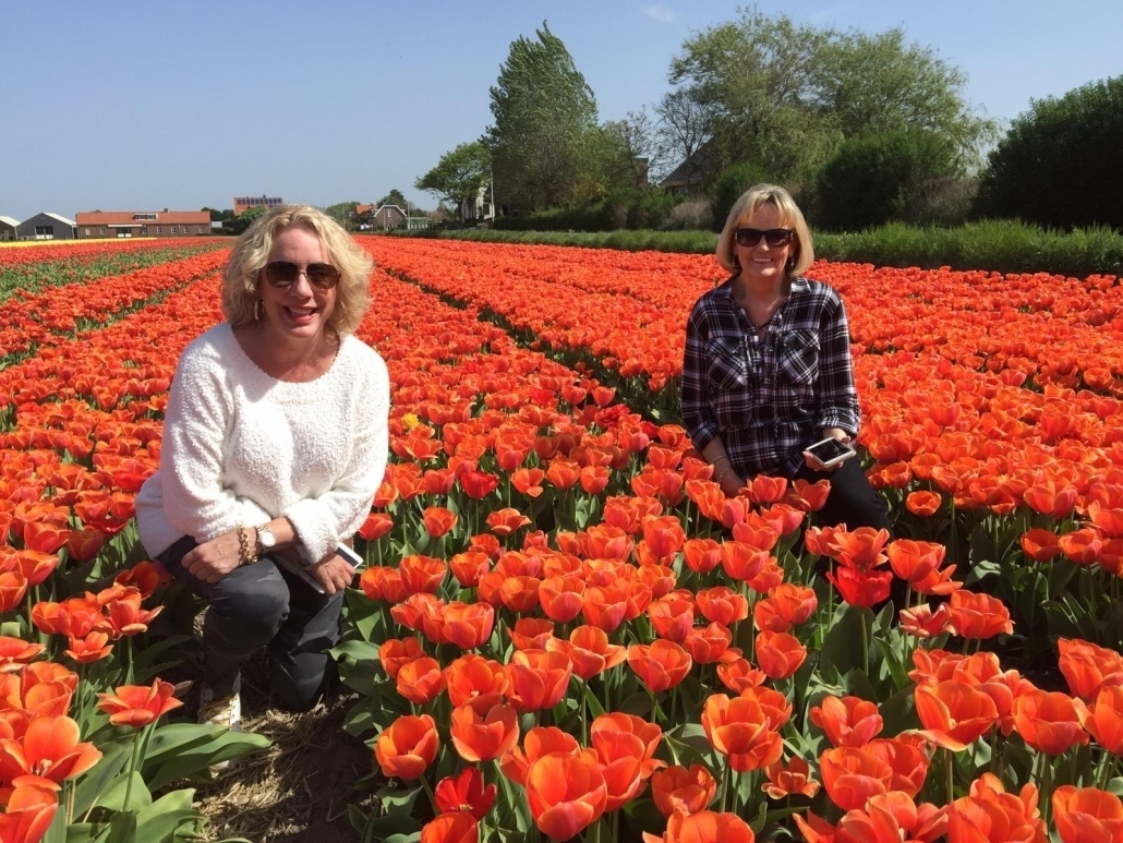 keukenhof private tour