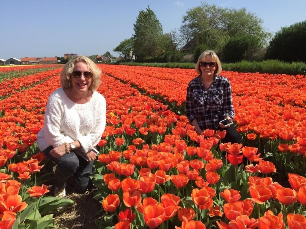 tulips_keukenhof
